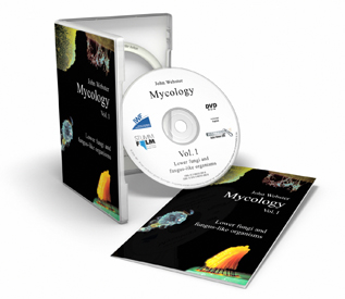Mycology Volume 1: Lower Fungi and Fungus-Like Organisms DVD
