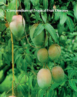 Compendium of Tropical Fruit Diseases