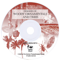 Diseases of Woody Ornamentals and Trees Image CD-ROM (Single-User License)
