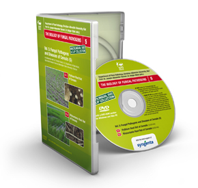 50 Video Clips on Fungal Diseases of Cereals DVD