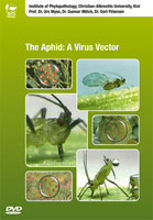 The Aphid: A Virus Vector DVD