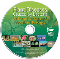 Plant Diseases Caused by Bacteria: An Image Database and Educational Resource CD-ROM (Single-User License)