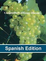 Plagas y Enfermedades de la Vid (Grape Diseases)