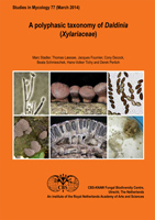 Studies in Mycology No. 77: A polyphasic taxonomy of Daldinia (Xylariaceae)