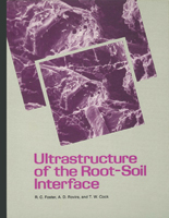 Ultrastructure of the Root-Soil Interface
