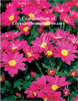 Compendium of Chrysanthemum Diseases