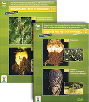 Diseases and Pests of Sugarbeet Volumes 1 and 2 DVDs Companion Set (4 Videos)