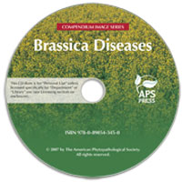 Brassica Diseases Image CD-ROM (Single-User License)