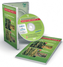 Fungal Pathogens and Diseases of Cereals Vol. 4: Eyespot Disease, Bunt and Smut Diseases DVD